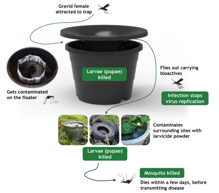 Featured Product: In2Care Mosquito Trap